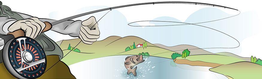 Cañas de pesca a mosca