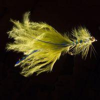Damsel Blue Gold - L66