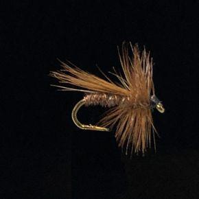 Brown Sedge-E69