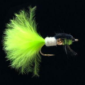 Montana Whisker-L10