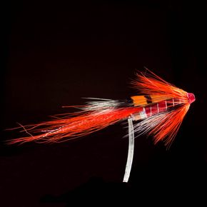 Allys Shrimp Tubo-S14