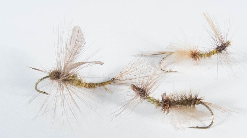 moscas emergentes anzuelo curvo pesca mosca