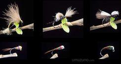 6 moscas muy pescadoras para pescar reos