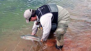 CATCH & RELEASE - Pesca sin muerte