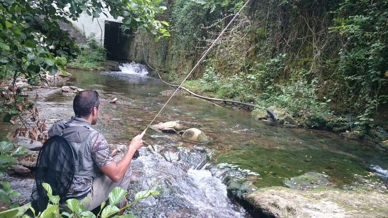 pesca-a-mosca-seca