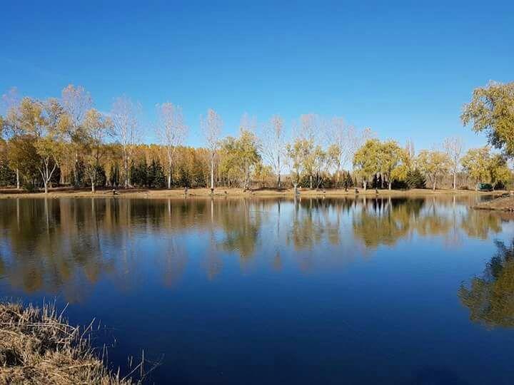 pesca-mosca-lago-renedo-santa-ana-01