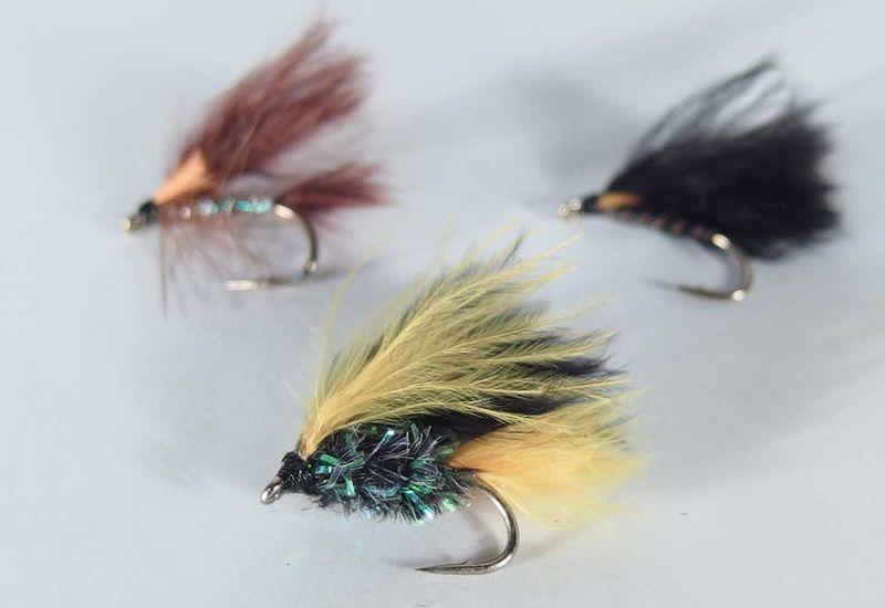 viva-moscas-pesca-mosca-lago